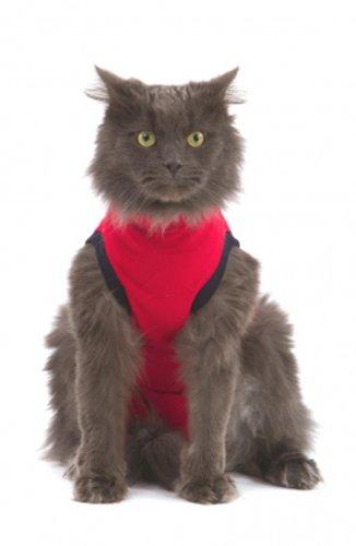 Cat-Pet-Shirt-XXXS-Red