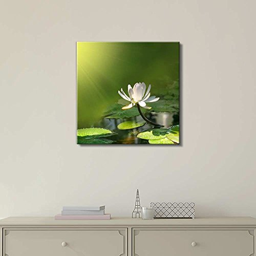 Water Lily Lotus with a Green Background Calmness Concept Wall Decor