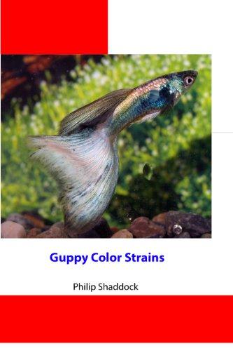 Guppy Color Strains ()
