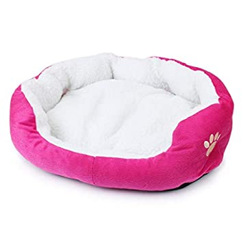 Dog Bed - Candy Color Paw Small Dog Bed     - Amazon com