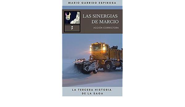 Las Sinergias de Marcio (3) Acción correctora: sátiras de programadores e informáticos dentro del mundo corporativo de las empresas de consultoría, ...