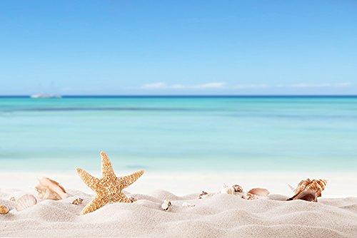 Garden Winds - Gazebo Back Drop Screen Kit - White Sand Beach - 114