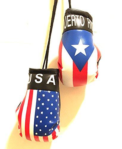 Puerto Rican American mini Boxing Glove Boricua Puerto Rico flag cars Van suv ()