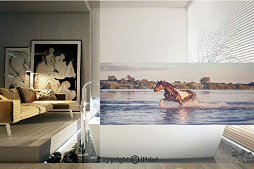 Decorative Privacy Window Film/Horse Galloping Forward in Lake Spirit Winds Emblem of Freedom and Stability Theme/No-Glue Self Static Cling for Home Bedroom Bathroom Kitchen Office Decor Blue Brown