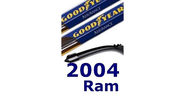 2004 Dodge Ram repuesto parabrisas limpiaparabrisas (2 cuchillas): Amazon.es: Coche y moto