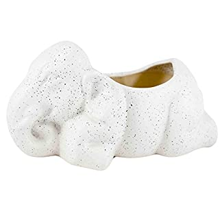 Lasaki Elephant Ceramic Pots for Indoor Plants,Planters,Flower pots,gamla for Indoor,Outdoor,Balcony,Home,Garden,Office Decor,Succulent Pot (Color:White)(L:18 cm, W:10 cm, H:10 cm) 41JgWjPWhYL