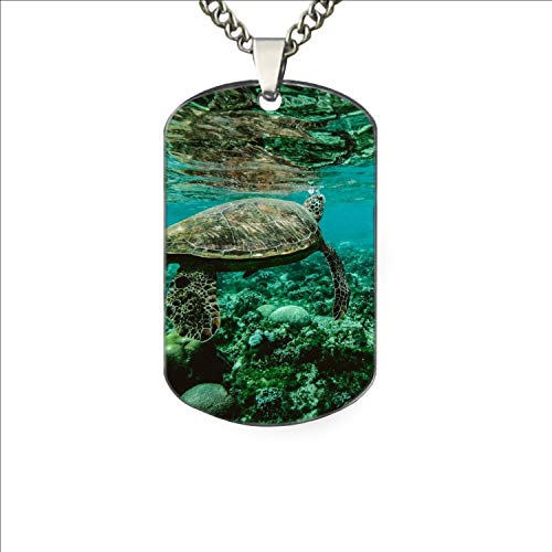 PANQJN Pet ID Tags - Turtle Underwater Personalized Dog Tags & Cat Tags.