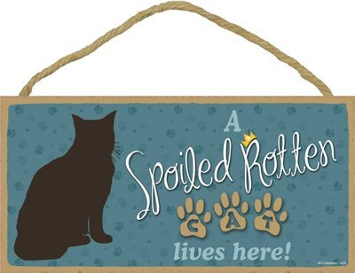 A Spoiled Rotten Cat Lives Here! 5