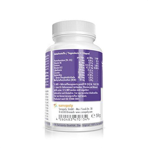 L-METHIONIN - Materiales esenciales para grupos de proteínas: Amazon.es: Salud y cuidado personal