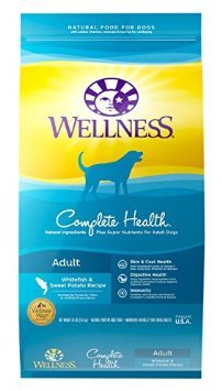 Wellness Complete Health Natural Dry Dog Food -...