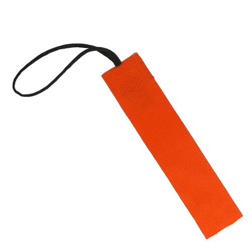 TAC SHIELD 1-Inch Wide Stealth Gear Tag (2-Pack), Orange