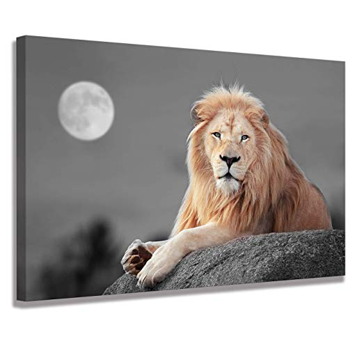 Lion Wall Living Room Decoration Scarface Poster Art Wall Paintings Animal Wall Art Lion of Judah Wall Art Animal Decor Lion Poster Canvas Print Animal Pictures Brown Decor Three-Piece Home (Pictures Animal)