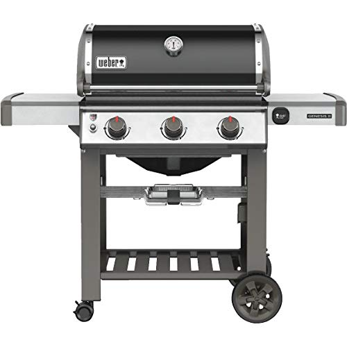 Weber 66010201 Natural Gas Grill', Black