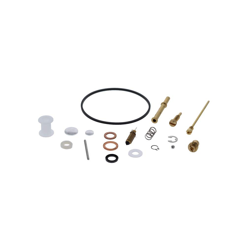 Briggs & Stratton 807962 Carburetor Overhaul Kit