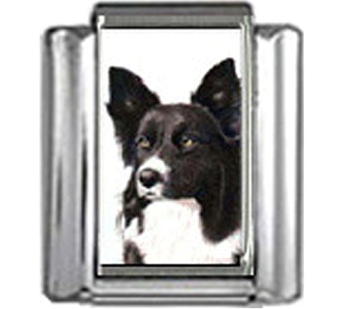 Stylysh Charms Border Collie Dog Photo Italian 9mm Link DG082