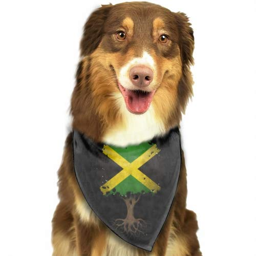 - PANQJN Tree of Life with Jamaican Flag Pet Classic Solid Color Dog Collar Collection - Regular Collars, Seatbelts, Personalized Collars and Bandana