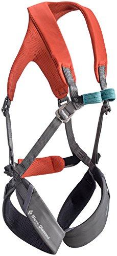 Full Body Climbing Harness (Black Diamond Momentum Harness - Kid's Octane)
