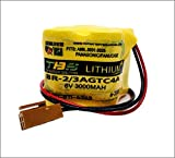 BR-2/3AGCT4A 6V PLC Replacement Battery for