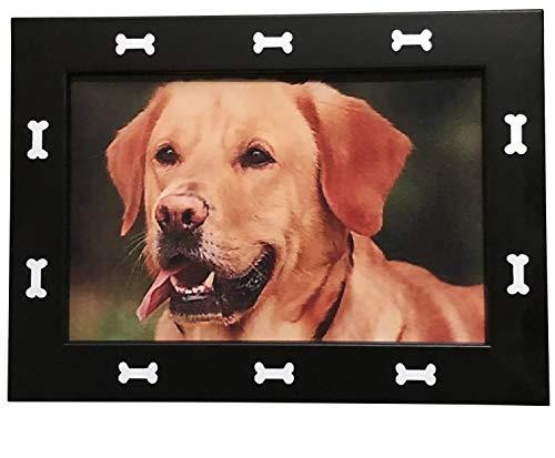 - Petlandia Dog Bone Design Dog Frame
