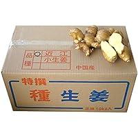 種生姜 黄金生姜 種用 10kg (中国産近江生姜)