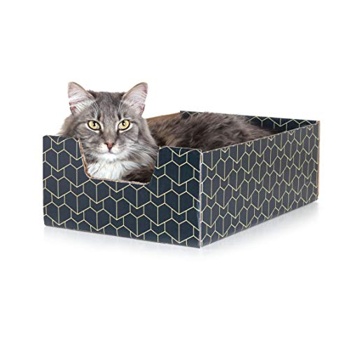 Purrfect Cat Box , Blue
