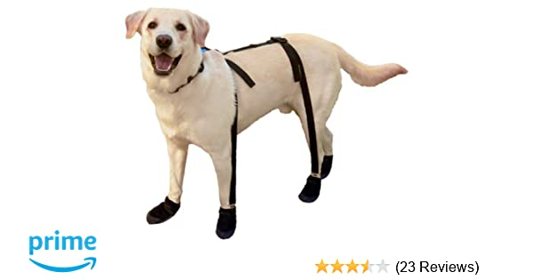 Canine Footwear Suspenders Snuggy Boots for Dog, Medium, Black