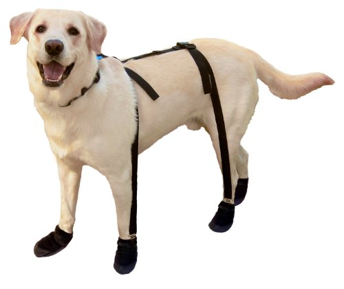 - Canine Footwear Suspenders Snuggy Boots for Dog, Medium, Black