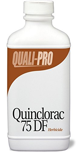 Quinclorac 75 DF Selective Herbicide Equivalent to Drive quali-1014 by Quinclorac