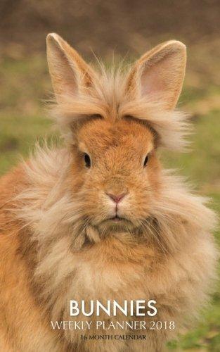 Bunnies Weekly Planner 2018: 16 Month Calendar