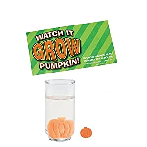 Grow A Pumpkin Halloween Party Favor Fun Packs - 5 Pieces