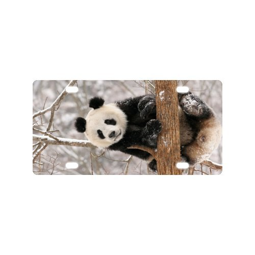 panda License Plate with Durability and Strength -12