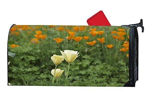 Poppy Meadow Magnetic Mailbox Cover, Mailbox Wrap Letter Post Box Cover Decor,Standard 6.5