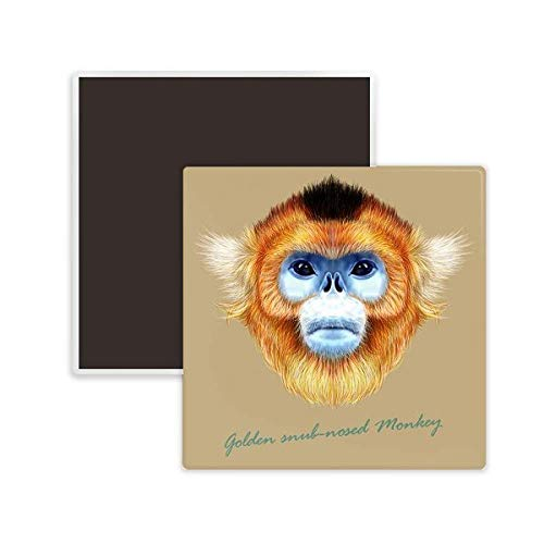 ub-Nosed Monkey Animal Square Ceramics Fridge Magnet 2pcs ()