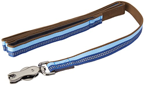 Coastal Pet Products DCP36906SAP K9 Explorer 1-Inch Leash for Dogs, 6-Feet, Blue