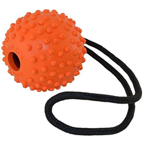 Ray Allen Ball on a Rope - Professional Quality Dog Training Ball - Orange 3