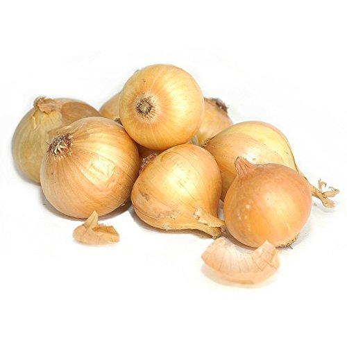 9 best onion yellow for 2019
