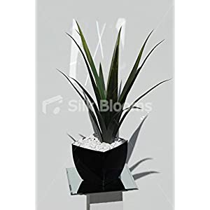 Silk Blooms Ltd Realistic Artificial Aloe Vera Plant Vase Floral Arrangement 8