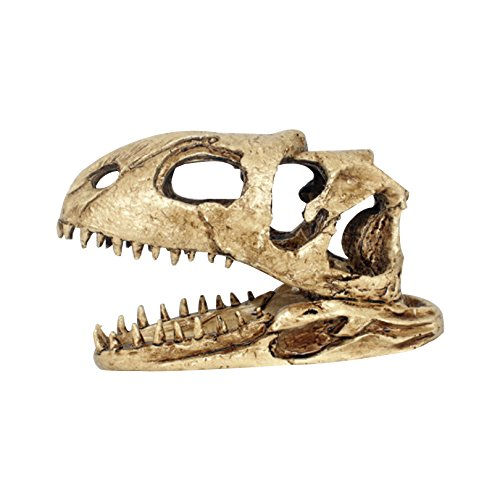 Petacc Reptile Habitat Decoration Resin Aquarium Decorations Fish Tank Ornament, Simulated Dinosaur Skull Pattern by Petacc