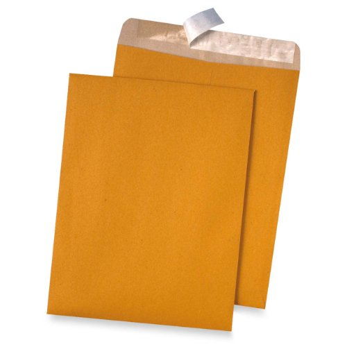 Quality Park 100% Recycled Kraft Catalog Envelope, 9 inches x 12inches, Kraft,  Redi-Strip, 100 Count (44511) by Quality Park