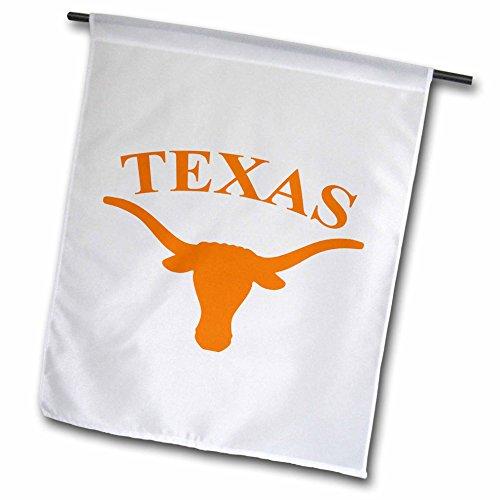 3dRose fl_3085_1 Texas Longhorn Garden Flag, 12 by (Photo Garden Flag)