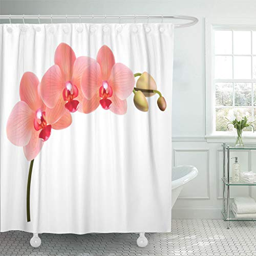 Emvency Shower Curtain Abstract Beautiful Tropical Branch of Peach Pink Orchid Phalaenopsis White Red Flowers Detailed Design Shower Curtains Sets With Hooks 72 x 72 Inches Waterproof Polyester Fabric