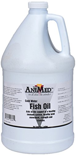AniMed Fish Oil Cold Water Fish Oil for Horses, 1-Gallon (Best Oil For Horses Joints)