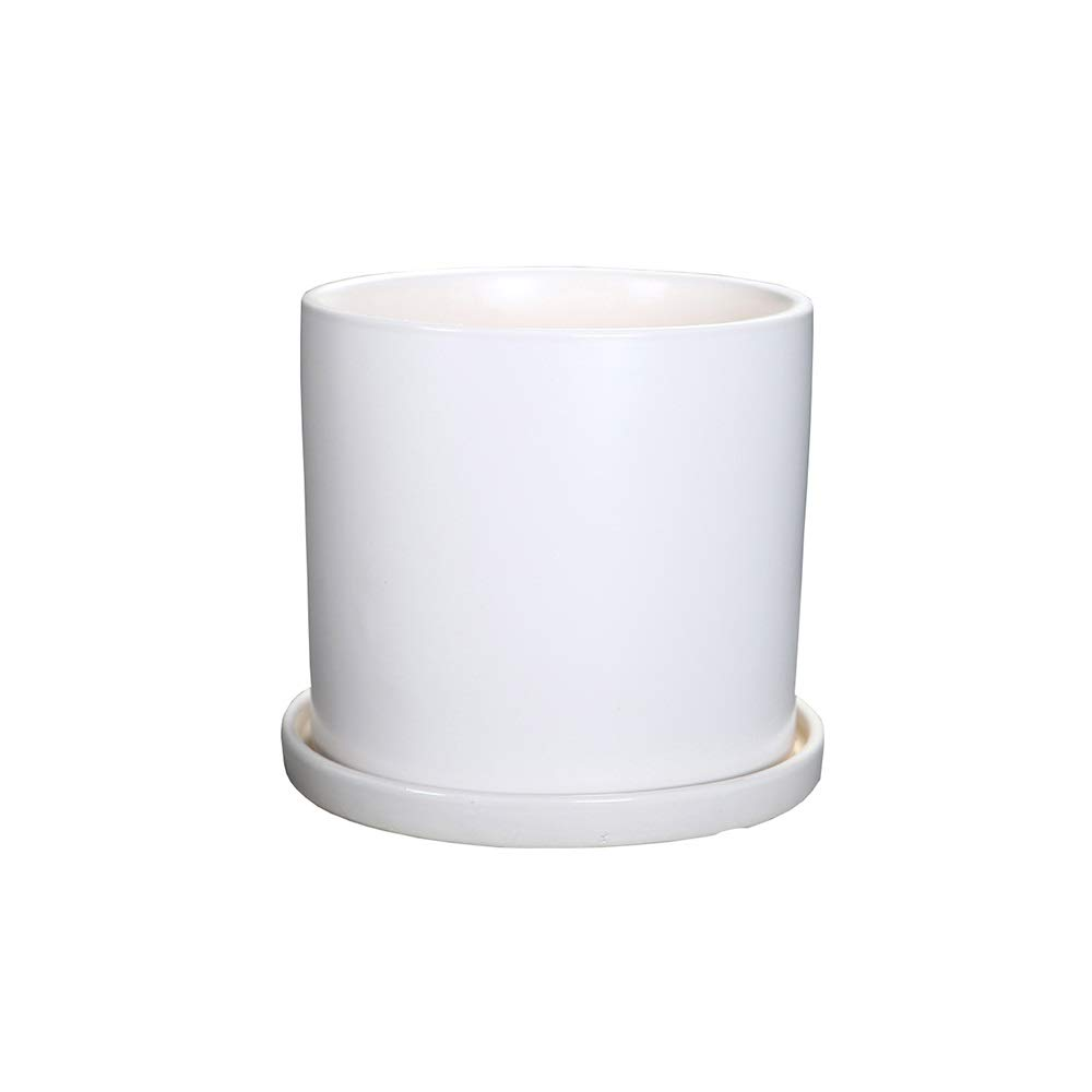 QFFL vasi di Fiori Flower Pot, Ceramic Plant Pot Herb Fioriera Indoor per la Decorazione Domestica con Vassoio (6 Colorei 3 Dimensioni Opzionali) Confezione da 2 Vasi da Giardino