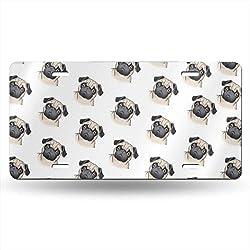 YongColer Front License Plate for Men/Women/Boy/Girls Car - Cute Pug Dog High Gloss Metal License Plate Novelty License Plate Tag - 6 x 12 Reinforce License Plates