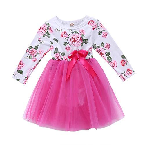 Cute Newborn Kids Baby Girls Dress Floral Long Sleeve O Neck Voile Ball Gown Dress Spring Summer Lavender 9M ()