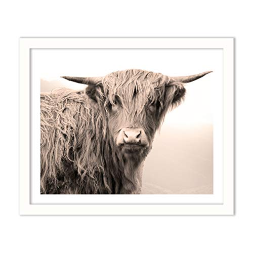 Humble Chic Framed Wall Decor - Fine Art Picture Poster Prints in White Frame for Home Decorations Living Dining Room Bedroom Kitchen Bathroom Office - Highland Cow Farm Animal, 16x20 Horizontal (Cow Picture Frame)