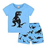 Hot Sale! Toddler Kids Baby Boys Dinosaur Pajamas Cartoon Print T Shirt Tops Shorts Outfits Set (Blue, 3T)