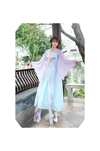 Asian Indian Princess Costumes - Chinese Traditional Women Hanfu Dress Fairy