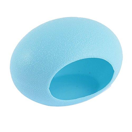 Egg House - 3