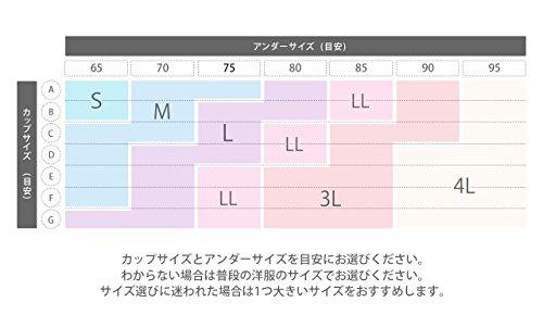 【日本正規品】ジニエブラ 3枚セット